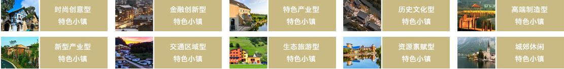 特色小镇规划:政策解读+运营模式+融资渠道+经典案例研究专题报告  专题研究 3